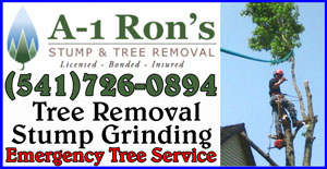 EUGENE TREE SERVICE AND TREE CARE - A1 RONS STUMP AND TREE REMOVAL SERVICE IN EUGENE OREGON.  AFFORDABLE TREE MAINTENANCE
